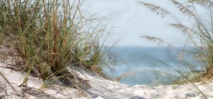 cropped-cropped-beach.jpg